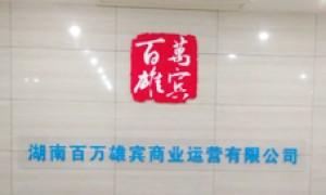 湖南百万雄宾商业运营有限公司